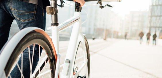 FahrradJäger insect am Fahrrad