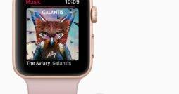 Apple Watch Series 3 mit AirPods
