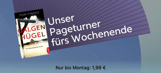 iBooks Pageturner Galgenhügel Thumb