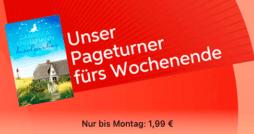 iBooks - Pageturner fürs Wochenende KW 31 - thumb