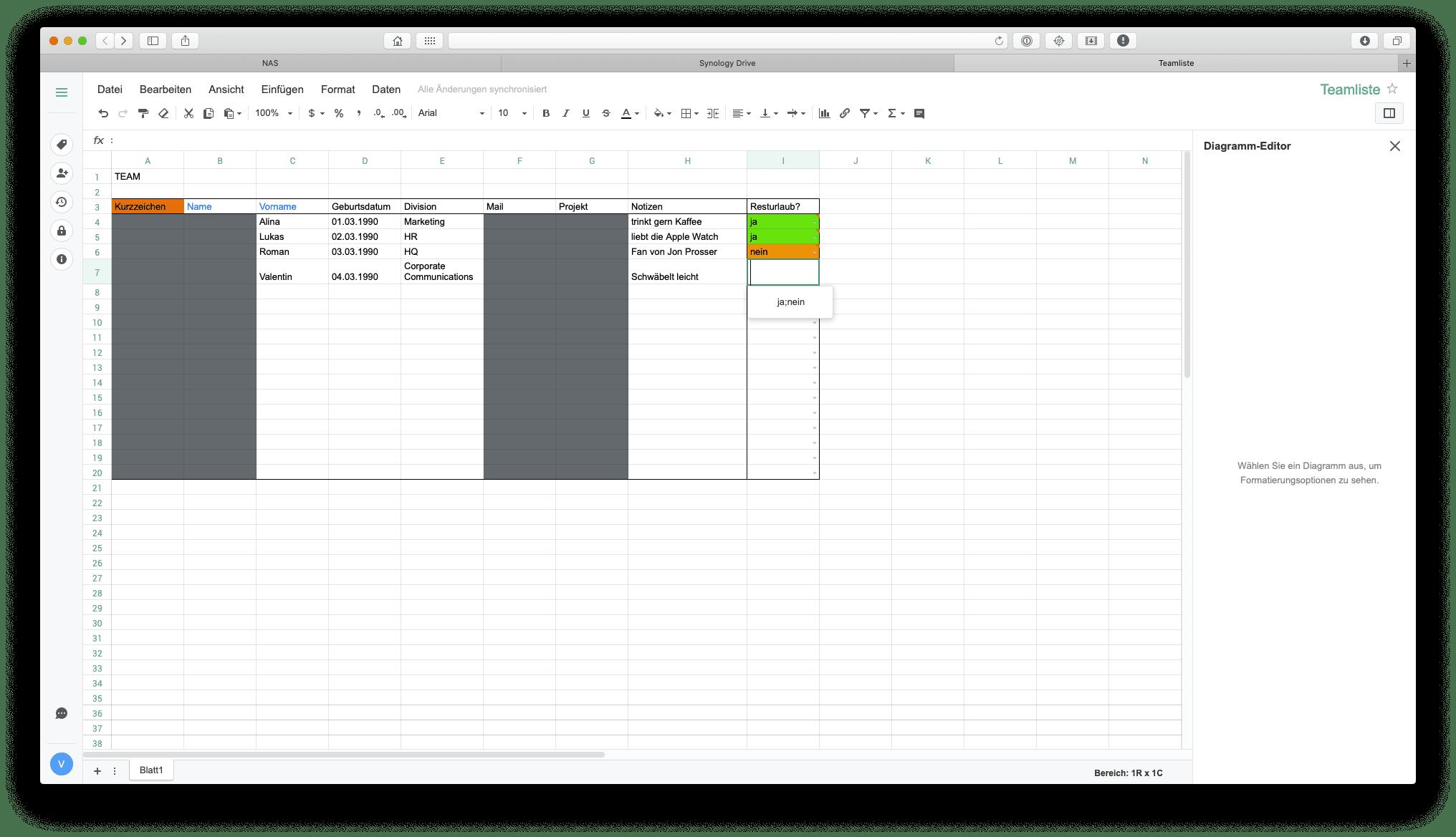 Ansicht einer Datenvalidierung mit Drop-Down-Liste